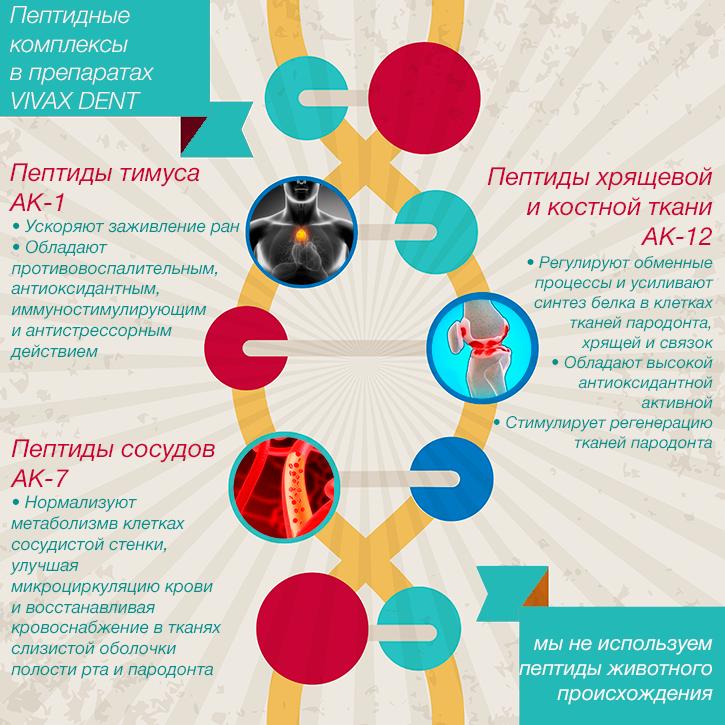 Пептидные комплексы в препаратах VIVAX DENT